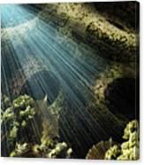 Cenote II Canvas Print
