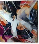 Centerfold I Canvas Print