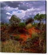 Central Australia I Canvas Print