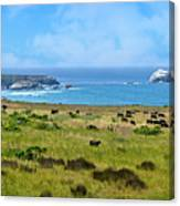 Central Coast Panorama - Hwy 1 Canvas Print