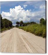 Central Florida Back Road Canvas Print