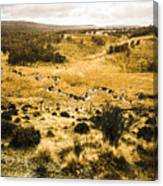 Central Highlands Of Tasmania Canvas Print