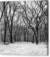 Central Park 1 Canvas Print