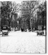 Central Park 7 Canvas Print