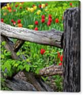 Central Park Shakespeare Garden New York City Ny Wooden Fence Canvas Print