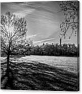 Central Park's Sheep Meadow - Bw Canvas Print