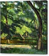 Cezanne: Etang, 1877 Canvas Print