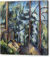 Cezanne: Pines, 1896-99 Canvas Print