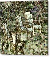 Chairs In Backyard Canvas Print