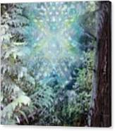 Chalice-tree Spirit In The Forest V3 Canvas Print