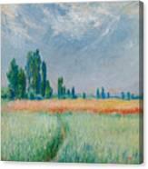 Champ De Ble Canvas Print
