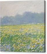 Champ D'iris A Giverny Canvas Print