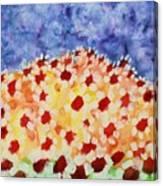 Champs De Marguerites - 01 Canvas Print