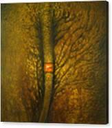 Chang Thai Canvas Print