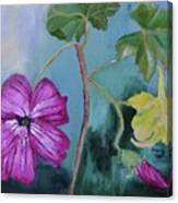 Channel Islands' Island Mallow Canvas Print