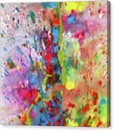 Chaotic Craziness Series 1988.033014 Canvas Print