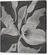 Charcoal Canvas Print