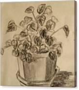 Charcoal Planter Canvas Print