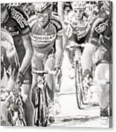 Charcoal Racers Canvas Print