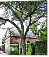 Charleston Church Street Live Oak And Ivy Canvas Print