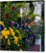 Charleston Flower Boxes Canvas Print
