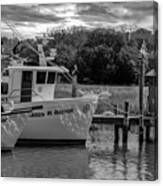 Charleston Star In Monochrome Canvas Print