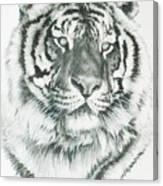 Charming Canvas Print