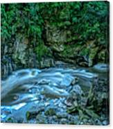 Charming Creek Walkway 1 Canvas Print