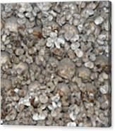 Charnel House Canvas Print