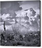 Chasing Clouds Again In Black And White  Canvas Print