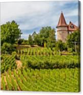 Chateau In A Vineyard Canvas Print