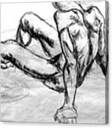 Chatto Canvas Print
