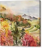 Cheap Joe Canvas Print