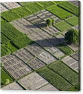 Checker Board Fields Canvas Print