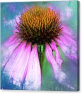 Cheerful. Canvas Print