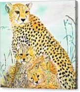 Cheetah Family Canvas Print