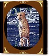 Cheetah Lean And Mean Canvas Print