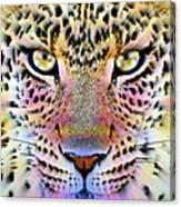 Cheetah Vi Canvas Print