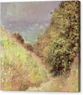 Chemin De La Cavee Pourville Canvas Print