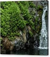 Chemisal Falls At Vichy Springs In Ukiah In Mendocino County, California Canvas Print
