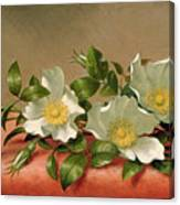 Cherokee Roses Canvas Print