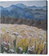 Cherokee Wildflowers Canvas Print