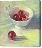 Cherries In A Cup On A Sunny Day Painting Canvas Print
