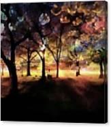 Cherry Blossom At Night Canvas Print