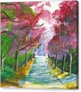 Cherry Blossom Lane Canvas Print