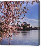 Cherry Blossom Over Tidal Basin Canvas Print