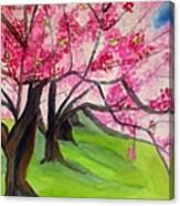 Cherry Blossom Sakura Canvas Print