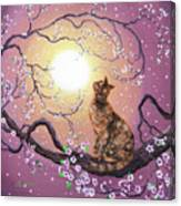 Cherry Blossom Waltz  Canvas Print