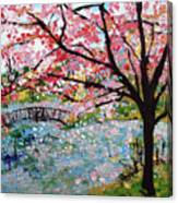 Cherry Blossoms And Bridge 3 201730 Canvas Print