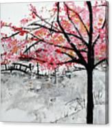 Cherry Blossoms And Bridge Meadowlark Botanical Gardens 201728 Canvas Print